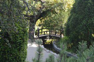 Margaret Island Budapest Japanese Garden Wooden Bridge